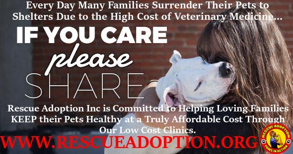 Rescue Adoption